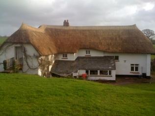 Water reed re-thatch Kentisbeare