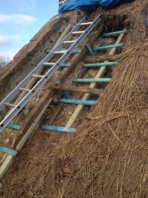 New timber structure to support new thatch