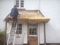 The new eaves wads go on...