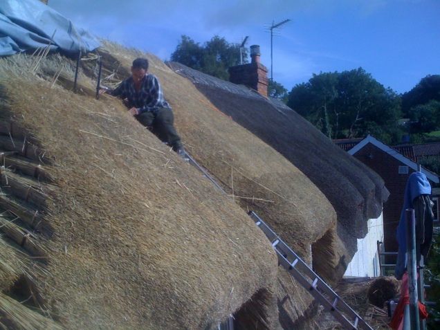 Combed wheat reed re-thatch in Chaffcombe